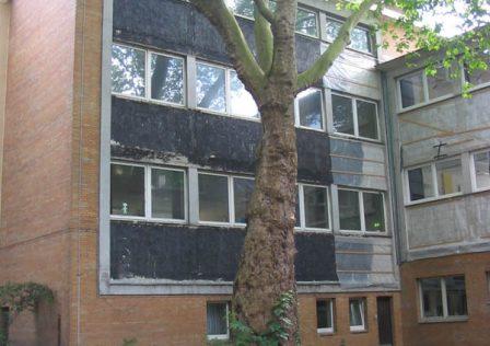 Teerstemmiger Fassadenanstrich, schwarz